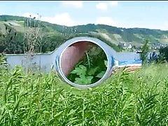 Mista Lovi bekommt am Rheinufer den Schwanz wundgerieben